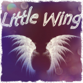 T-Svapo Little wing